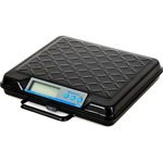 Brecknell Electromechanical Digital Bench Scale SBWGP250