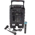 AmpliVox APLSW800