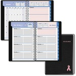 At-A-Glance QuickNotes BCA Appointment Book AAG76PN0205
