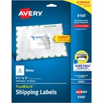 trying to buy some avery white inkjet shipping labels - outstanding customer support staff - sku: ave8168