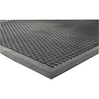 Genuine Joe Outdoor Clean Step Scraper Mat GJO70467