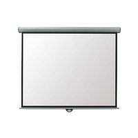 Metroplan Eyeline EEV30W Electric Projection Screen