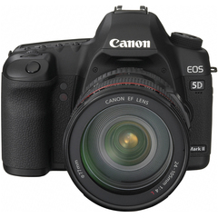 Canon EOS 5D Mark II 21.1 Megapixel Digital SLR Camera (Body with Lens Kit) - 24 mm - 105 mm - 3