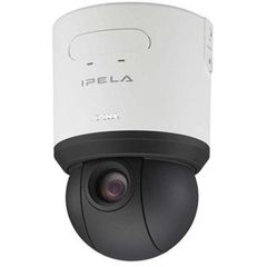 Sony SNC-RS46N Indoor Dome Network Camera - Color - CCD - Cable