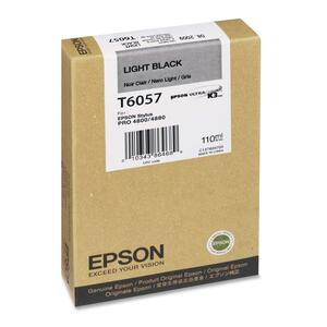 Epson Light Black Ink Cartridge EPST605700