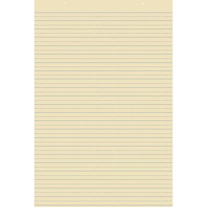 Pacon Recyclable Ruled Tagboard Sheet PAC5163