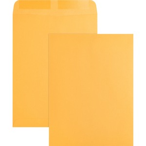 Business Source Plain Catalog Envelope BSN42100