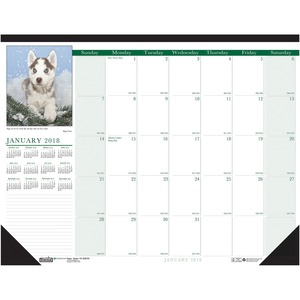 House of Doolittle Puppies Calendar Desk Pad HOD1996