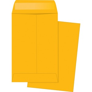 Business Source Little Coin Kraft Envelope BSN04442