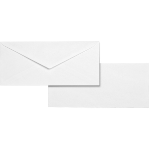 Business Source Business Envelope BSN04467