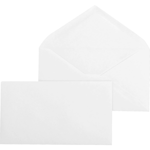 Business Source Business Envelope BSN04469