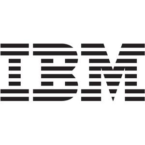 IBM 1724-100