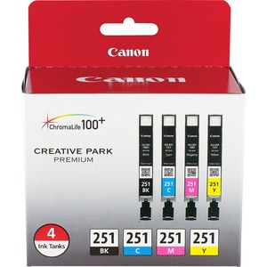 Canon CLI-251 4 Color Ink Pack251 4 Color Ink Pack CNMCLI251BCMY