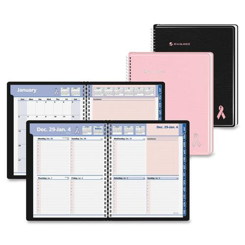 At-A-Glance QuickNotes BCA Appointment Book AAG76PN0100
