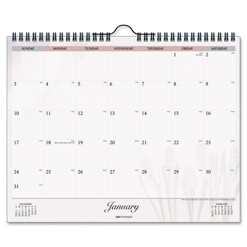 Day Runner Nature Dated Monthly Wall Calendar DRN9981