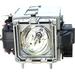 Image of V7 VPL442-1E 250 W Projector Lamp
