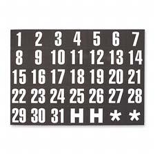 Magna Vision Magnetic Calendar Dates Indicators
