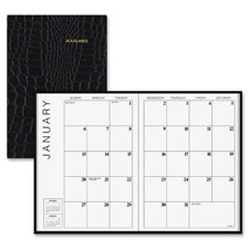 At-A-Glance Monthly Appointment Books