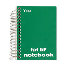 Mead Fat Lil' Wirebound Notebook