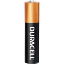 Duracell Long-life Alkaline AA Batteries