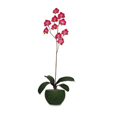 Baumgartens Sweetheart Orchid Artificial Flowers