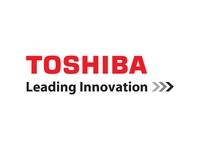 Toshiba B-9700-WLAN-QM-R Wireless Print Server