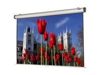 "Da-Lite 38831 95"" Manual Projection Screen"