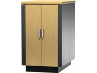 APC by Schneider Electric NetShelter CX Rack Cabinet