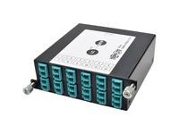 Tripp Lite 100Gb/120Gb to10Gb Breakout Cassette 24-Fiber MTP/MPO 12 LC