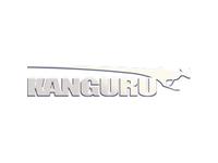 Kanguru DVD-Reader