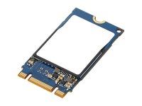 Lenovo ThinkPad 512 GB Solid State Drive - M.2 2242 Internal - PCI Express NVMe (PCI Express NVMe 3.0 x4)