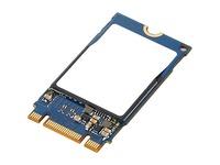 HD BO 1TB PCIE NVME M.2 2242 SSD