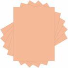 Domtar Colors 81019 Inkjet, Laser Copy & Multipurpose Paper
