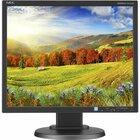 "NEC Display MultiSync EA193MI-BK 19"" SXGA LED LCD Monitor - 5:4 - Black - Advanced High Performance In-plane Switching (AH-IPS) Technology - 1280 x 1024 - 16.7 Million Colors - 250 cd/m² - 6 ms - 75 Hz Refresh Rate - DVI - VGA - DisplayPort"