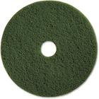 "Genuine Joe 17"" Scrubbing Floor Pad - 17"" Diameter - 5/Carton x 17"" (431.80 mm) Diameter x 1"" (25.40 mm) Thickness - Fiber - Green"