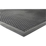 Genuine Joe Clean Step Scraper Floor Mats