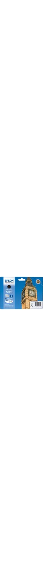 Epson DURABrite Ultra C13T70314010 Ink Cartridge - Black