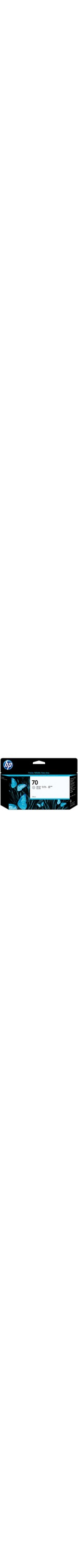 HP No. 70 Ink Cartridge - Light Grey
