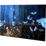 AOC 27B1H 27And#34; Full HD IPS WLED LCD Monitor - 16:9 -