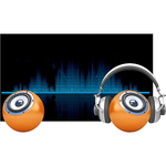 iiyama ProLite XU2493HS-B1 23.8And#34; Full HD LED LCD IPS Monitor - 16:9 - Matte Black