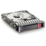 HP 300Gb SAS 3G 10K SFF DP HDD