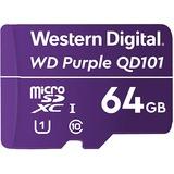 WDD064G1P0C