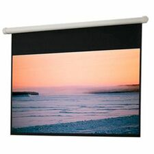 Draper Salara 136031 Projection Screen