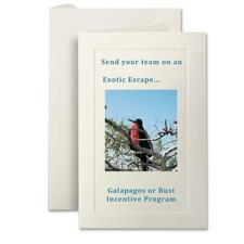 "First Base Embossed Fold Over Panel Card - 40 Card Capacity - For 5.50"" (139.70 mm) x 8.50"" (215.90 mm) Size Card"