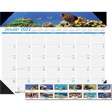 HOD 193 Doolittle Earthscapes Sea Life Mthly Desk Pad HOD193