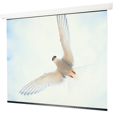"Draper Targa Electric Projection Screen - 184"" - 16:9 - Wall Mount, Ceiling Mount"