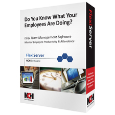 NCH Software Flexi Server