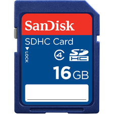 SanDisk 16 GB Secure Digital High Capacity (SDHC)