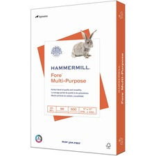 "Hammermill Paper for Multi Copy & Multipurpose Paper - White - 96 Brightness - Ledger/Tabloid - 11"" x 17"" - 24 lb Basis Weight - Smooth - 500 / Pack"
