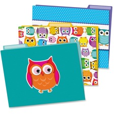 CDP 136009 Carson Colorful Owls File Folders Set CDP136009